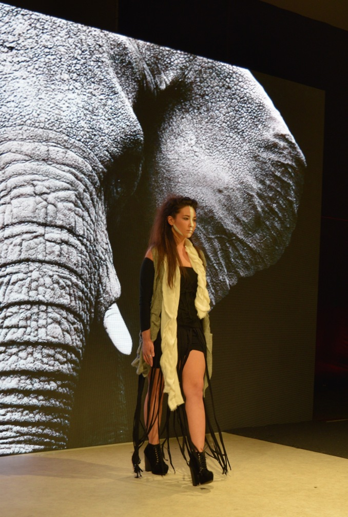 ElephantasiaVFW2016.jpg